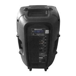 12'' PA Active Speaker