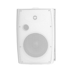 8 Inch Indoor and Outdoor Wall Mounted Speaker