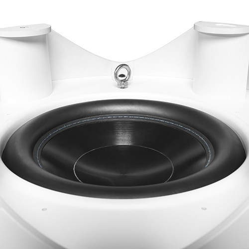 10'' High Performance Subwoofer