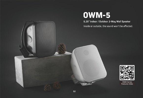 Indoor/Outdoor 2-Way Wall Speaker